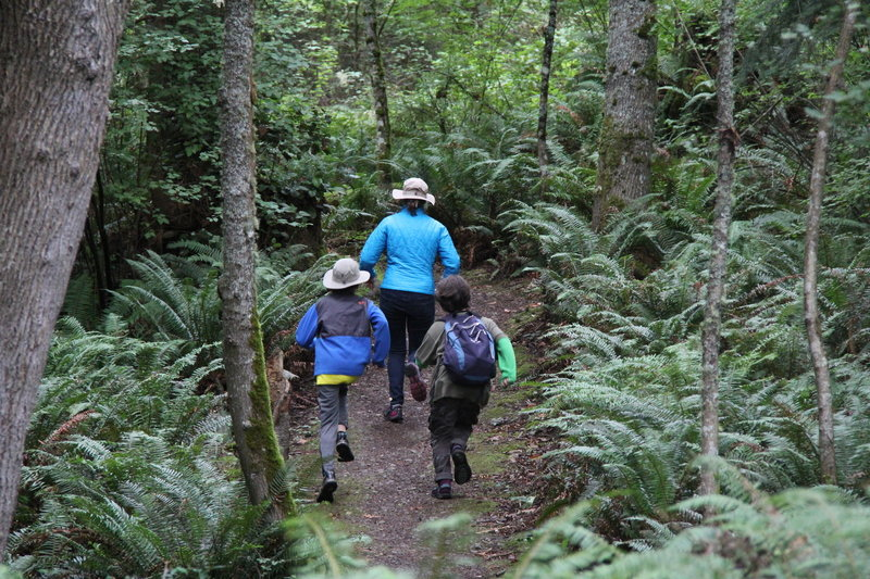Keeping pace on Guemes Mountain trail