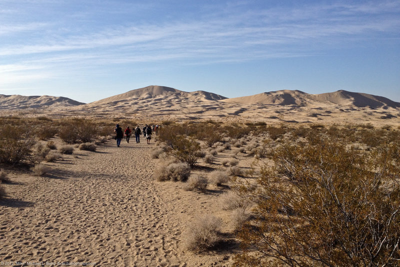 Kelso Dunes in desert in Mohave Preserve.