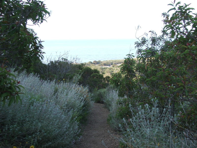 nicholas flat trail