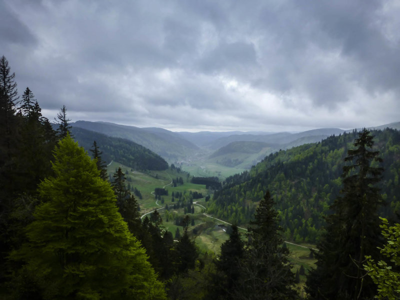 Scenic Menzenschwander Tal (valley) in the Schwarzwald (Black Forest).