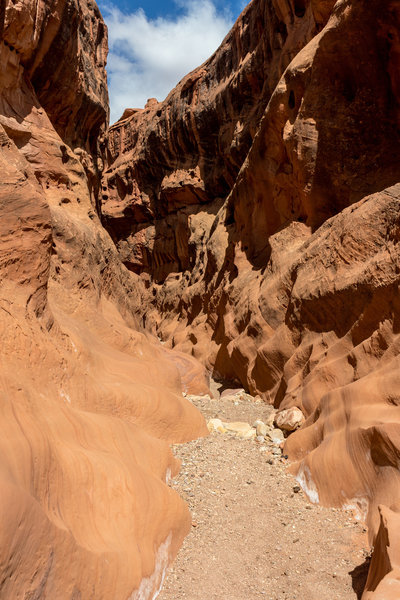 A fascinating wave pattern at the bottom of the canyon walls in Little Death Hollow