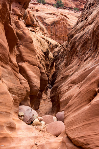 You'll need to scramble across a number of boulders in the slots of Little Death Hollow
