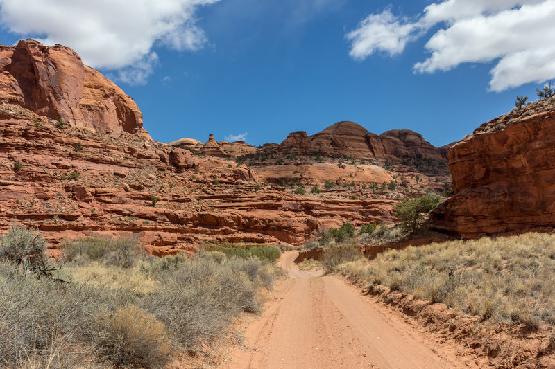 Horse Canyon Road often shortcuts across the winding creek that gave the canyon its name