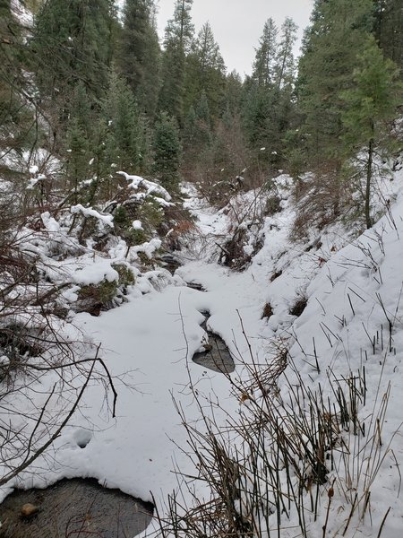 Snowy Day in Icebox Canyon