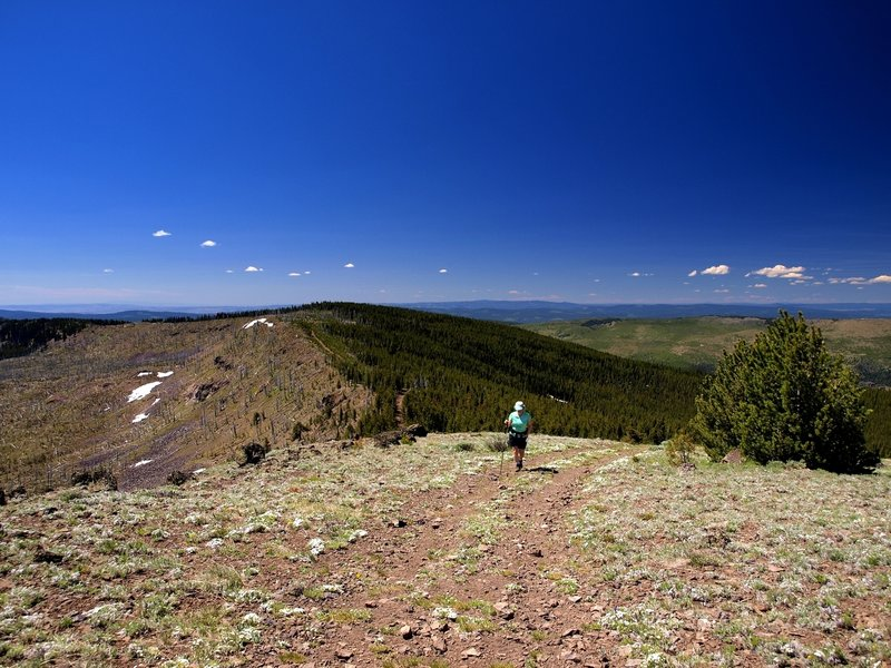Approaching the summit of Lookout Mountain