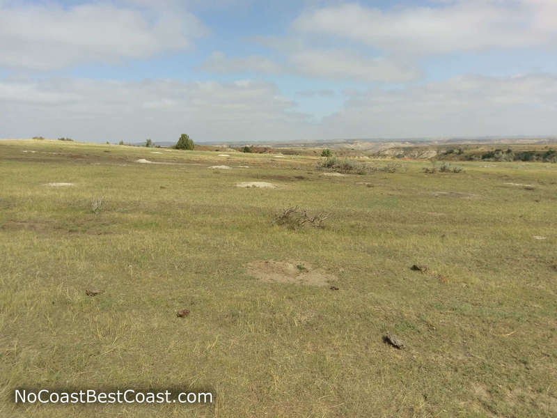 The giant prairie dog town you cross on the Big Plateau Trail