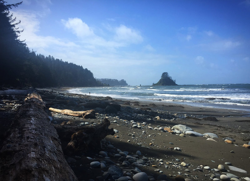 The Olympic Coast just north of Cape Alava