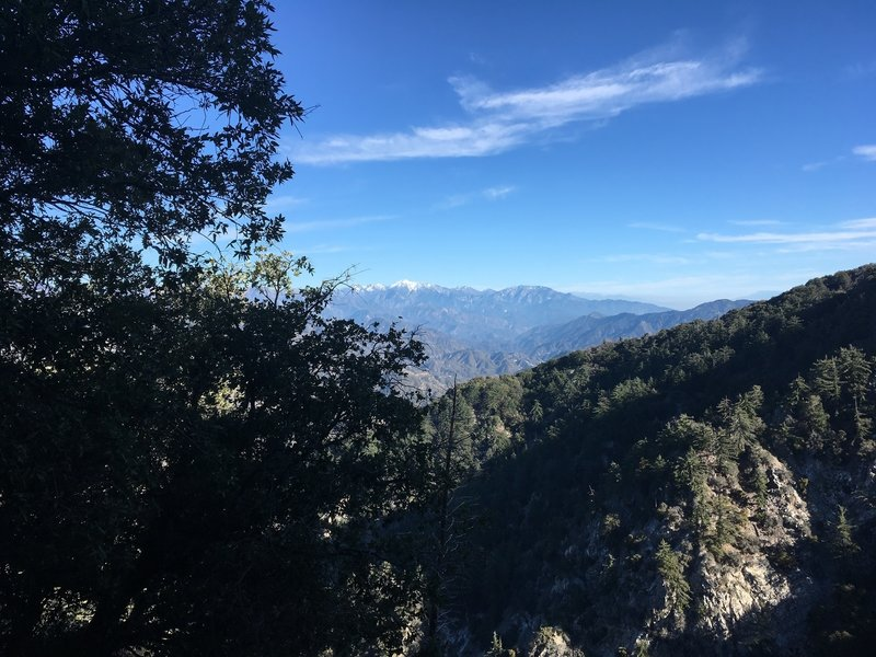 View of Mt. Baldy