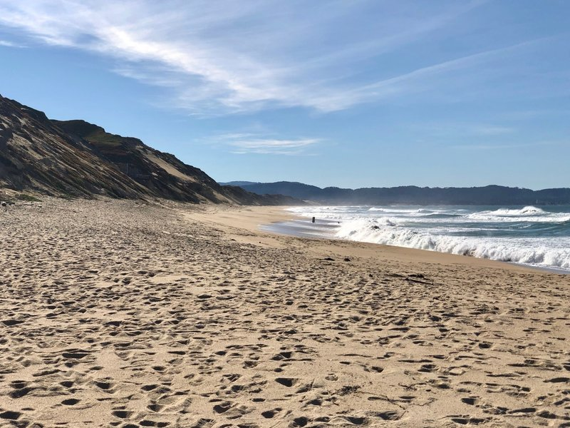 The wide open beach at Fort Ord Dunes State Park