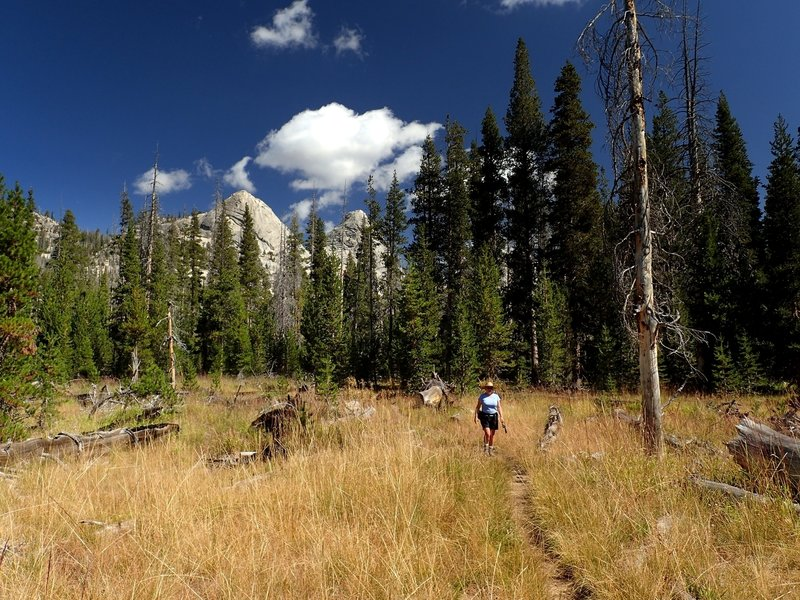 Crossing a meadow along the Cathedral Fork Trail