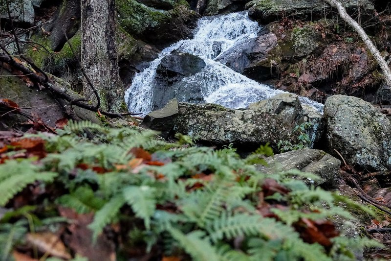 Even in late December, there is green to be found near this small cascade in Schunnemunk Mountain State Park