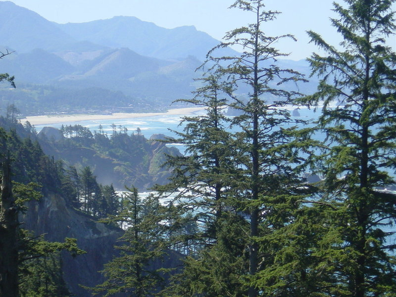 View of Cannon Beach from Clatsop Loop Trail