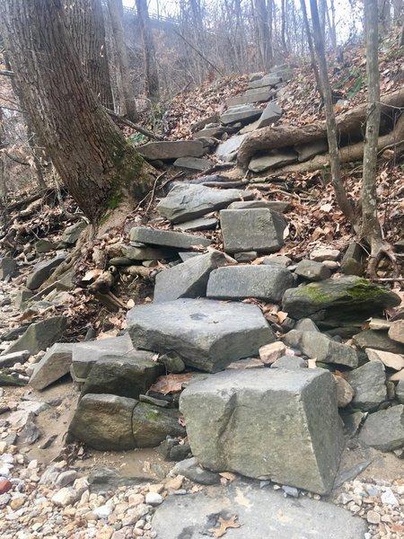 Potomac Heritage Trail x Pimmit Run - Stone Steps