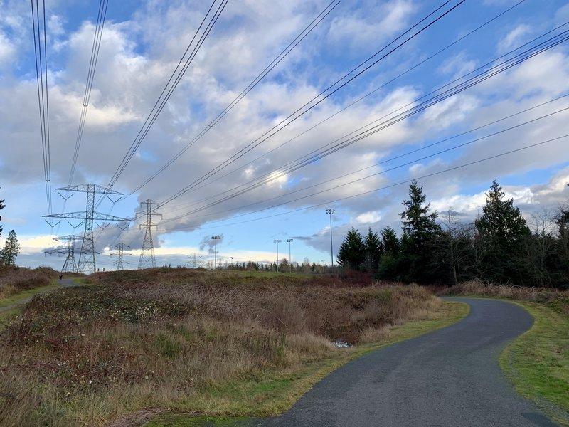 Walking Along the BPA Trail