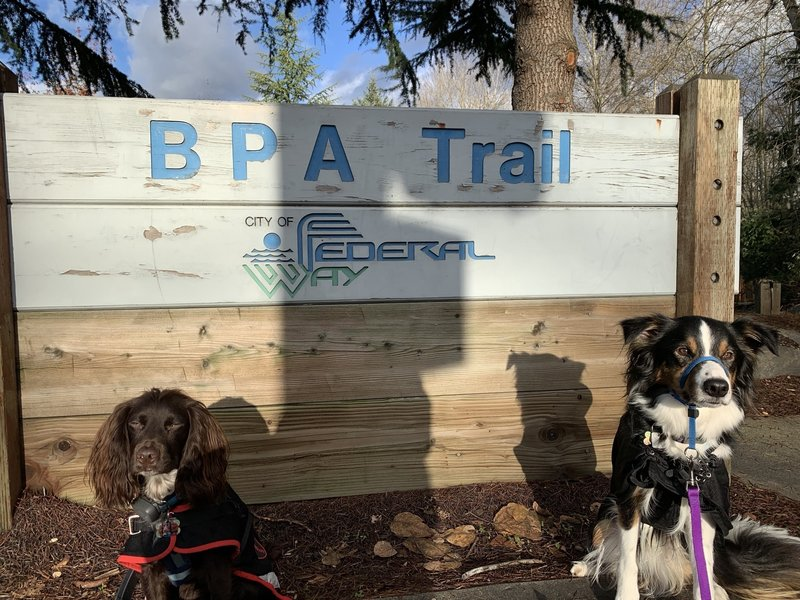 Walking the BPA Trail in Federal Way