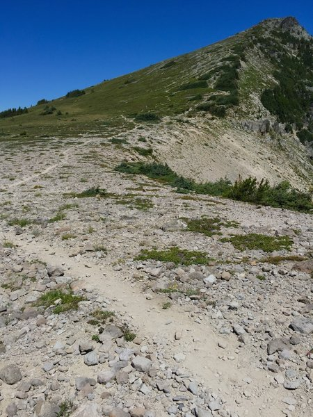 Trail to Skyscraper Mt, from Skyscraper Pass