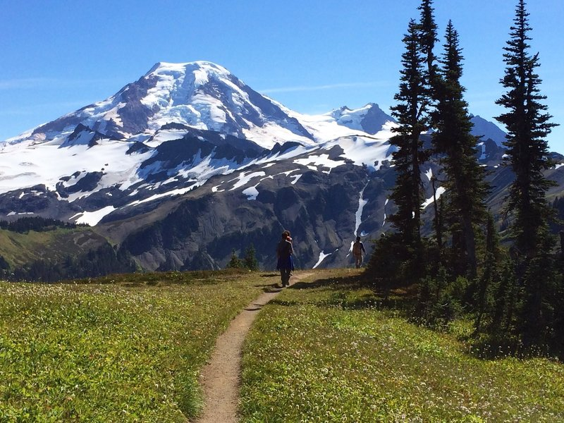 Along the Skyline Divide trail, with Mt Baker in the distance