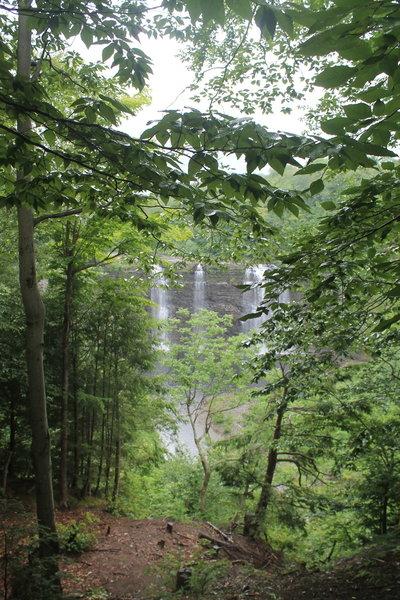 First Few of Falls