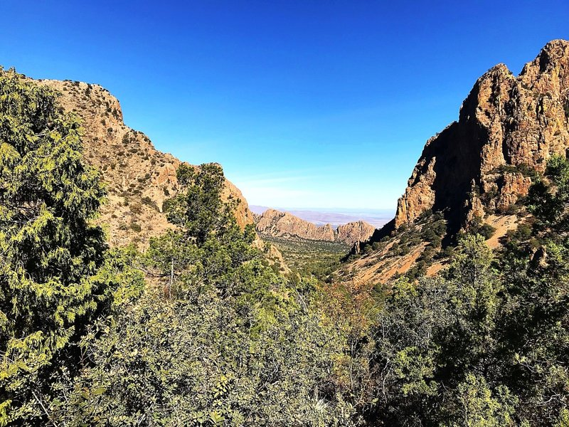 View from The Lost Mine Trail