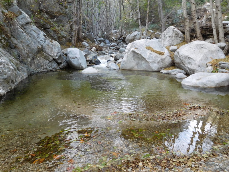 Large pool where the West Fork Bear Creek enters the main canyon.