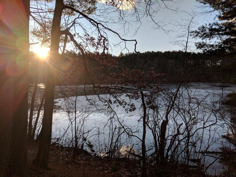 Kennedy's Pond