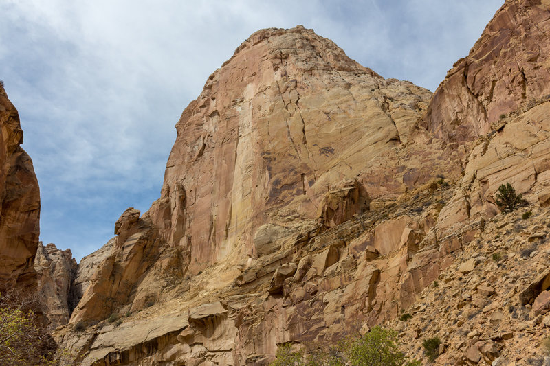 Massive Navajo Sandstone towers on both sides of Lower Spring Canyon.
