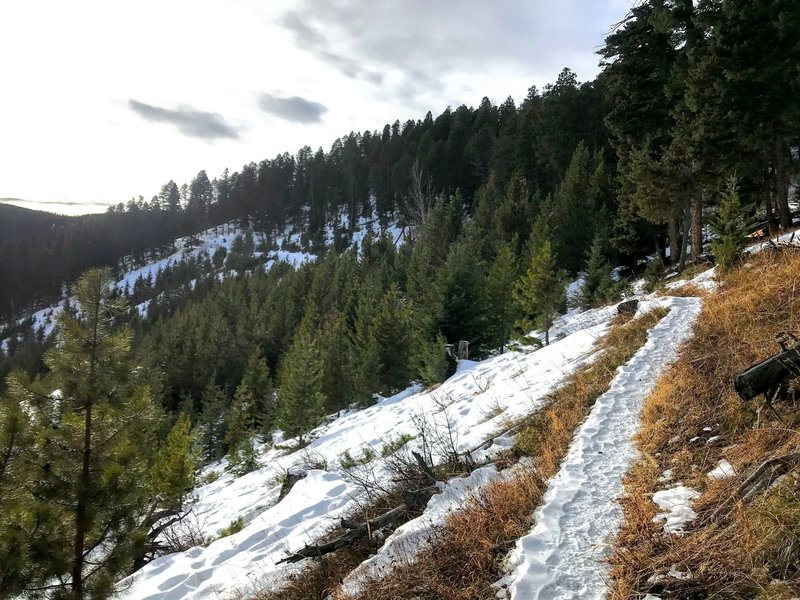 The trail carves across the mountain on a bright winter day.