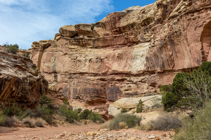 You can see how water has carved its way into the sandstone over millions of years through different layers of rock creating beautiful turns in Grand Wash