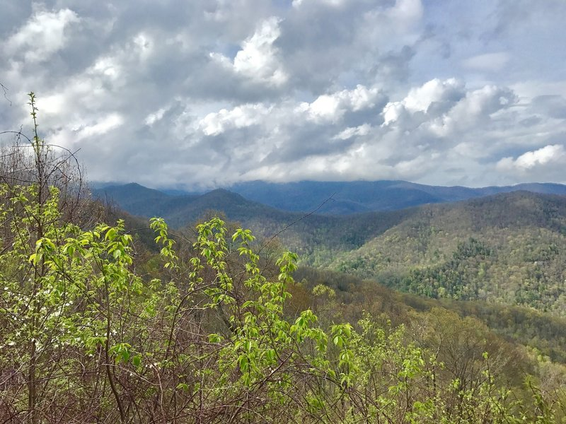 Beautiful view from trail leading to Hangover
