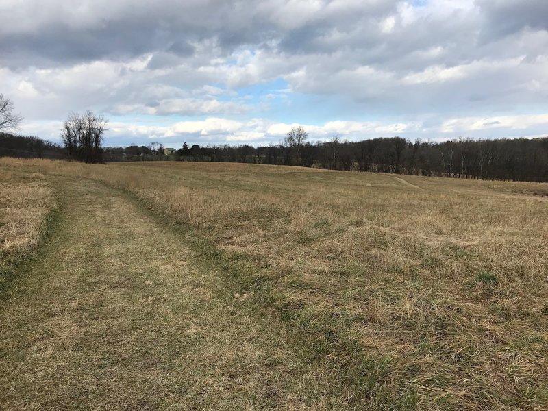 Wide cut grass trail