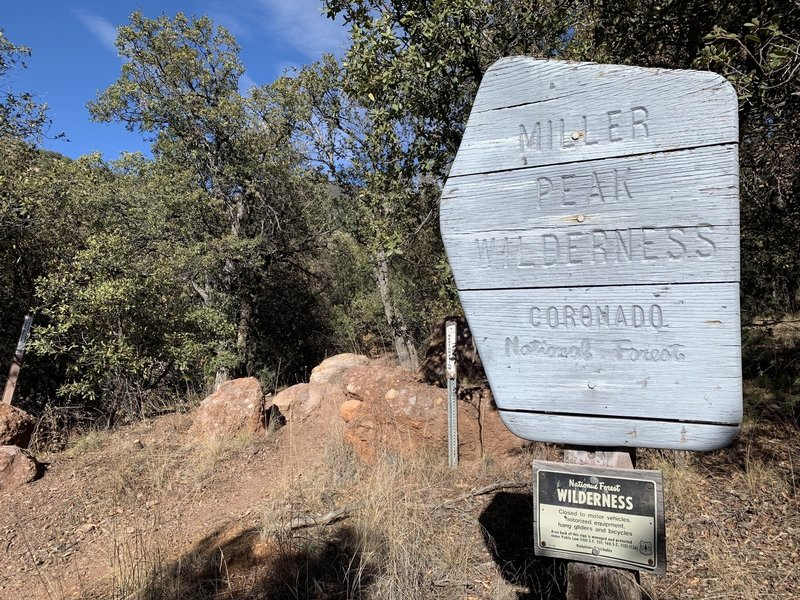 Miller Peak Wilderness boundary sign at trailhead