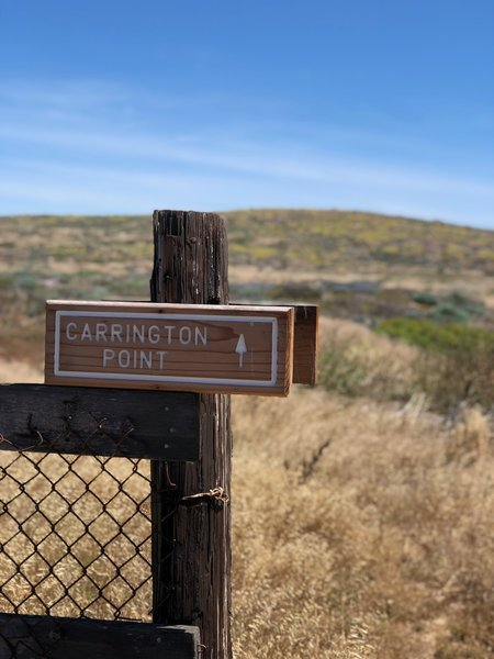 Waypoint on Carrington Point Trail