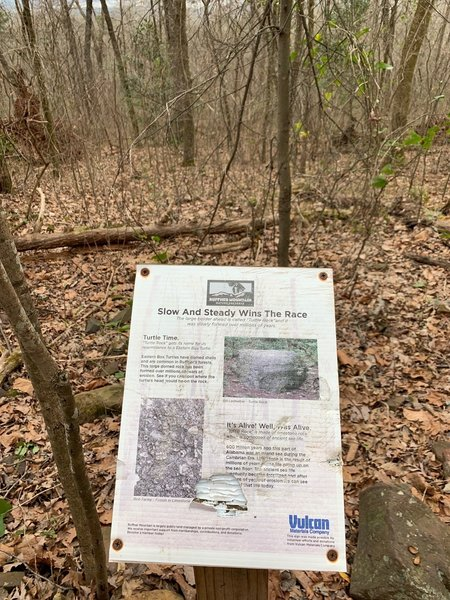 Informational Displays along the trail