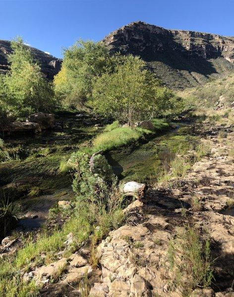 Last Chance Canyon T226