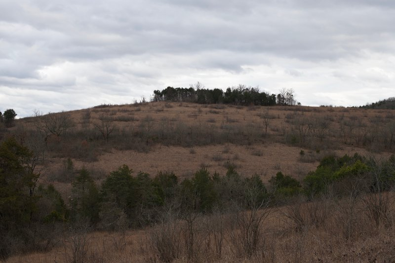 The trail starts to open up as it climbs up the hillside. Views of the surrounding hills open up before you.