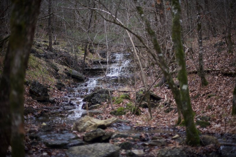 Cascades and small waterfalls can be found along the Homesteader trail in several locations.