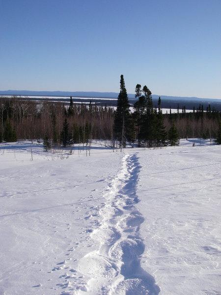 Snowshoe trail D3 looking towards Goose Bay.