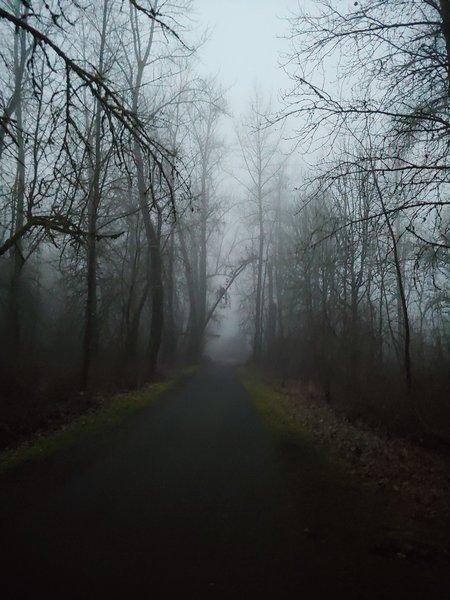 Spooky walk.
