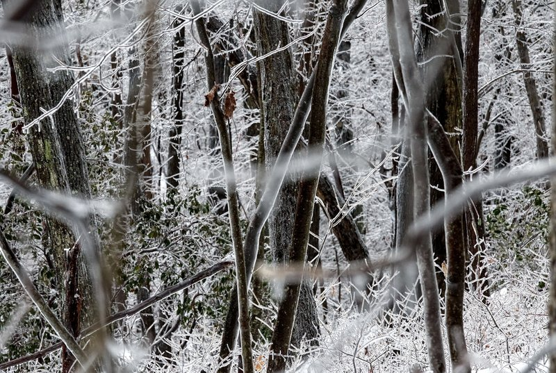 An ice storm helps White Trail in Mahlon Dickerson Reservation lived up to it's name.