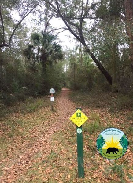 Run start for the 5K, 12K, and half-marathon trails.  Seminole State Forest Run for the Woods.