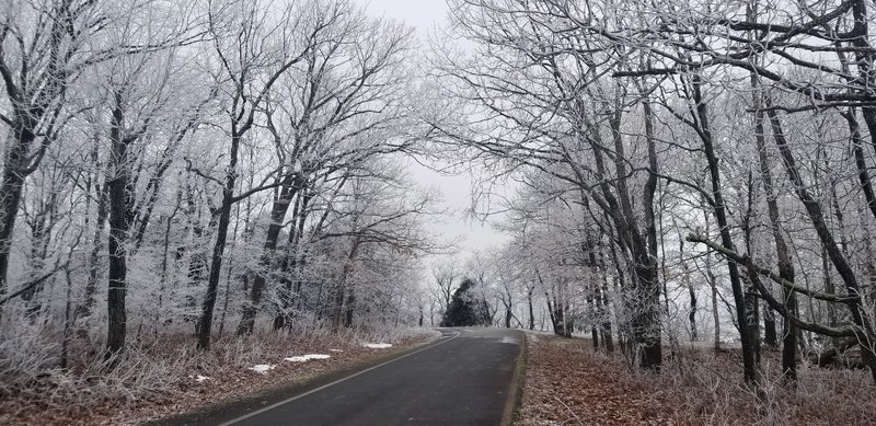 Cameron Bluff area on a frosty day