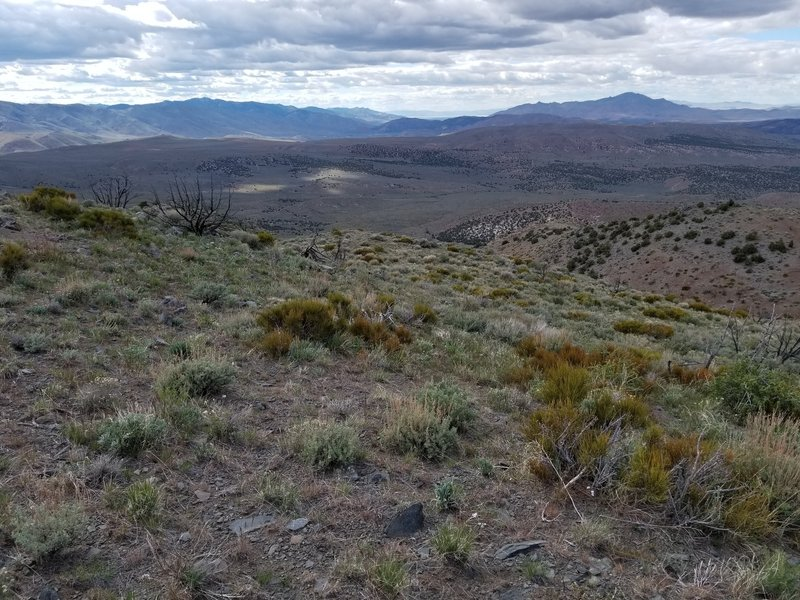 Long distance glimpse of Pyramid Lake looking east from summit.