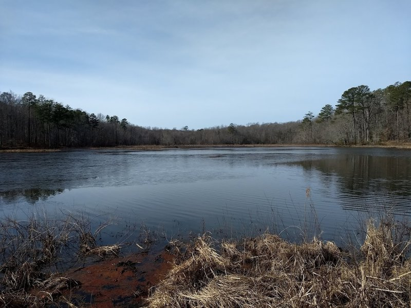 Beaver Lake Trail