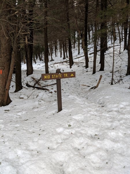 Trailhead just off 192 at the start of MST Sec 11 - Coming from the Ranger Station passing Half Way Lake on the left if you cross the small road bridge you have gone to far.