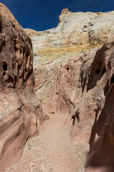 Bell Canyon and its Navajo Sandstone domes