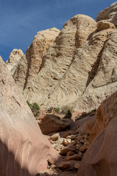 This Navajo Sandstone formation almost looks like a foot with toes