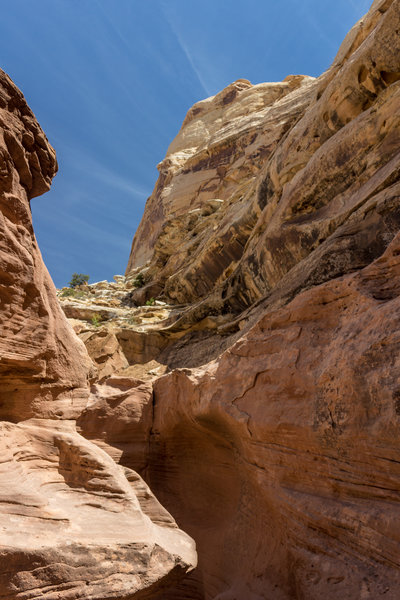 Narrow section in Little Wild Horse Canyon