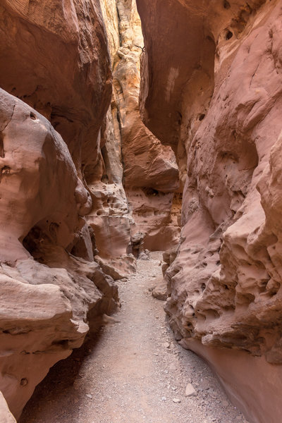 Little Wild Horse Canyon can feel almost like a cave