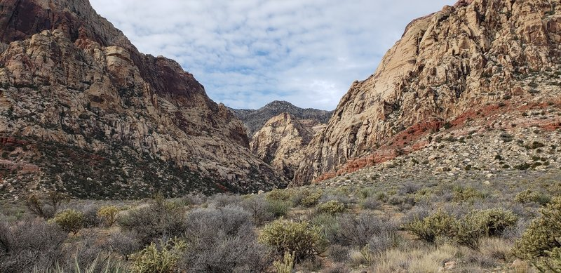 Looking into Oak Creek Canyon