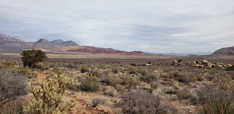 Along Knoll Trail you can look out to see Turtlehead Peak and Calico Tanks